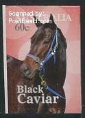 Black Caviar 1v s a voordeligste prijs