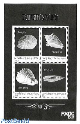 Sint Eustatius, Shells 4v m/s