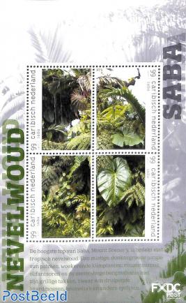 Saba, Cloud Forest 4v m/s
