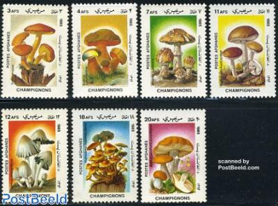 Mushrooms 7v
