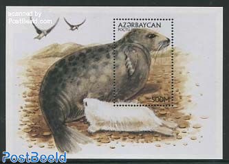 Caspic seal s/s