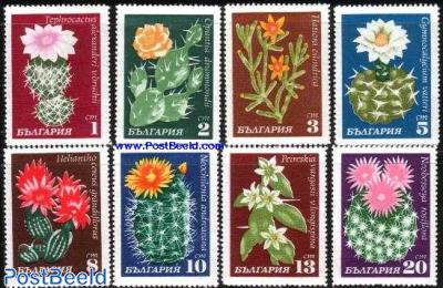 Cactus flowers 8v