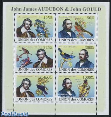 Aubon & Gould 6v m/s