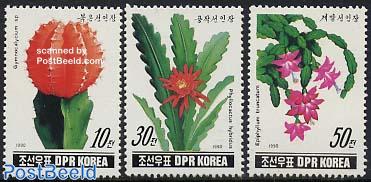 Cactus flowers 3v