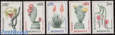 Succulents 5v