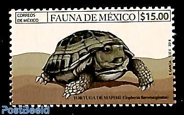 Turtle 1v