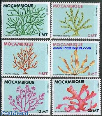 Sea plants 6v