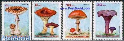 Mushrooms 4v