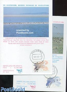 Dutch shallows max cards Trompet