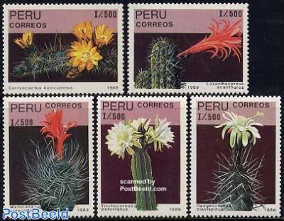 Cactus flowers 5v