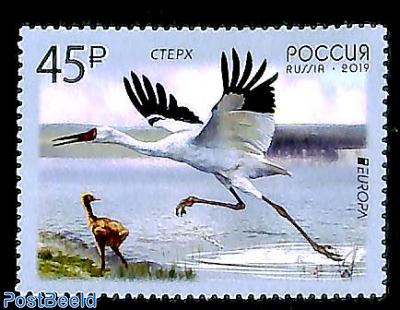 Europa, birds 1v