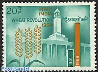 Wheat 1v