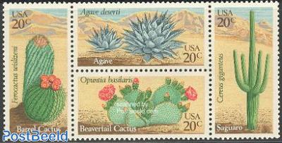 Cactus flowers 4v [:-:]