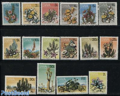 Cactus flowers 16v