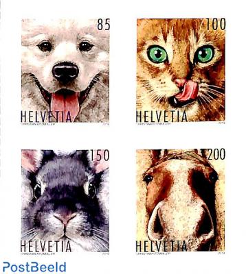 Animal friends 4v s-a